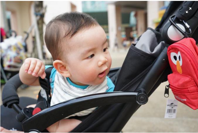 Baby Stroller For Girl