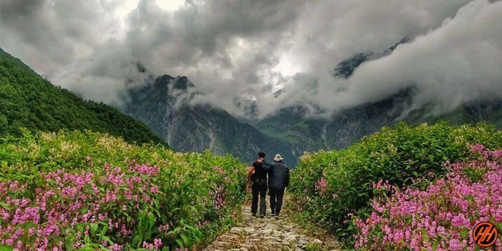 Valley of Flowers Trek